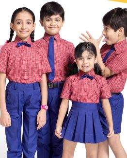 School Uniform At Best Offer Price Online HU15
